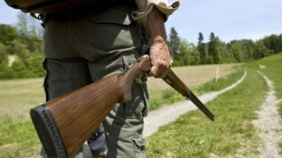 Motivul banal pentru a care a fost împușcat, în Predeal, un pui de urs șchiop. Ce explicații au venit din partea Ministerului Mediului